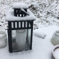 Schnee im Jänner 2018