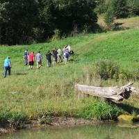 Tagesführungen am Wildniskulturhof-Wasser ist Leben