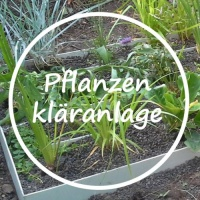Pflanzenkläranlage-