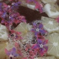 Borretschblütensekt-