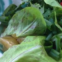 Salat mit warmem Zucchinidressing-