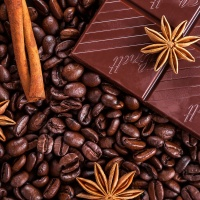 Zutaten-Schokolade, Kaffeebohnen, Zimt, Sternanis