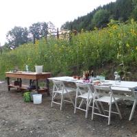 Open Air Dinner-