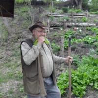Sepp Holzers Permakultur-