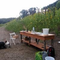 Unsere Outdoorküche-