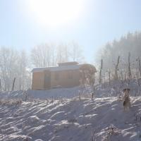 Der Wagen im Winter-