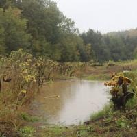 Wasserretentionsräume-