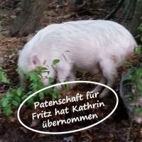 Patenschaft für Fritz-